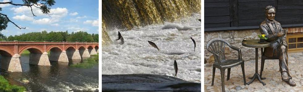 Lido zivis Kuldīgā